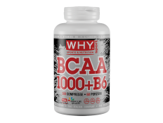 WHY SPORT  - BCAA 1000+B6 300 cpr