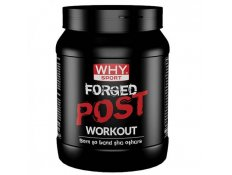 WHY SPORT - FORGED POST WORKOUT - 600 gr.