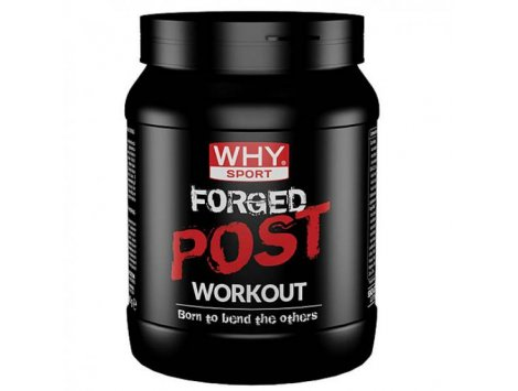 WHY - FORGED POST WORKOUT 600 g