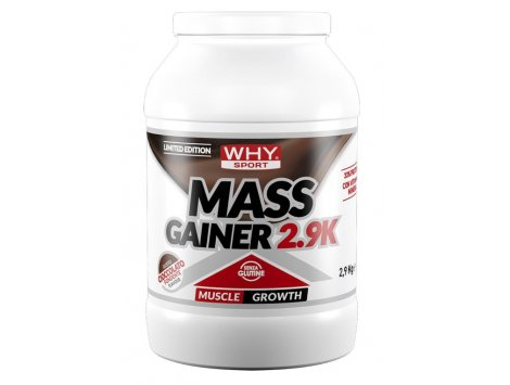 WHY - MASS GAINER 2,9 Kg - LIMITED EDITION