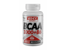WHY SPORT - BCAA 1000 100 cpr