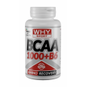 WHY SPORT - BCAA 1000+B6 - 100 Cpr.