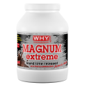 WHY SPORT - MAGNUM EXTREME - 750 gr.